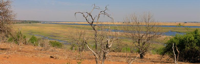 Chobe-River