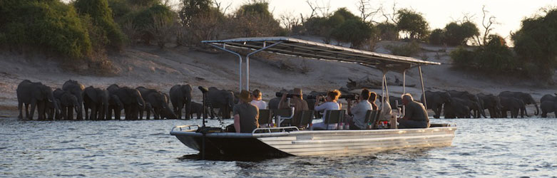 Photo-Safari-Chobe